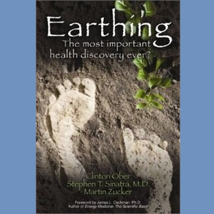 Earthing Book - English (Second Edition)